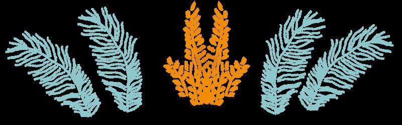blue-yellowplants.png